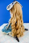 Classical Alice's wig from the back..